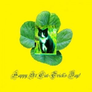 Happy St Cat-tricks Day and St Patricks Day Mugs
